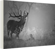Canvases of Richmond Park