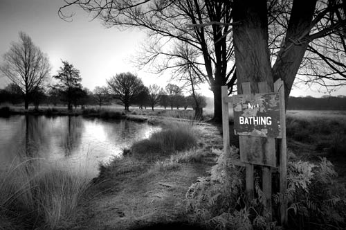 No bathing sign by a pond in Richmond Park, London