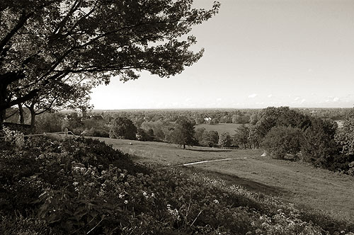 Richmond Hill View