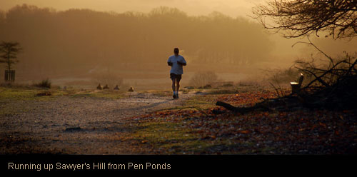 Running in Richmond Park